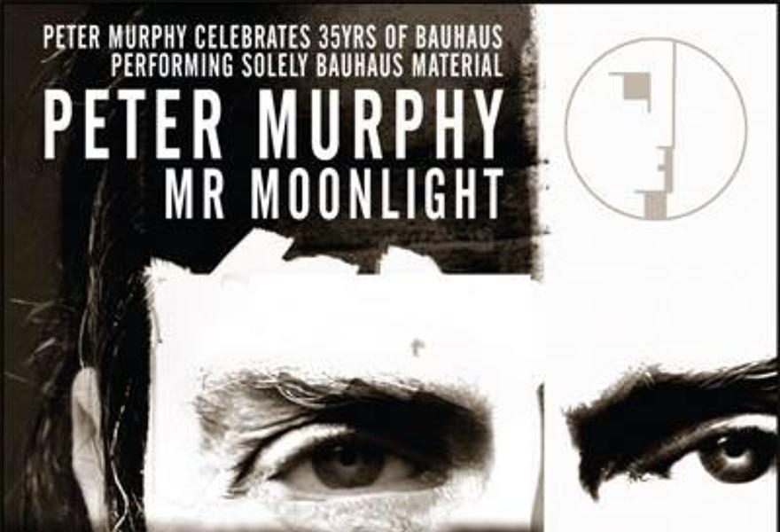 Peter Murphy (UK)
