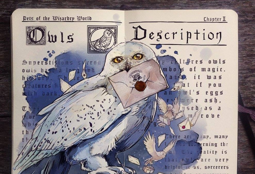 «Загадка профессора Дамблдора или олух, пузырь, остаток и уловка»