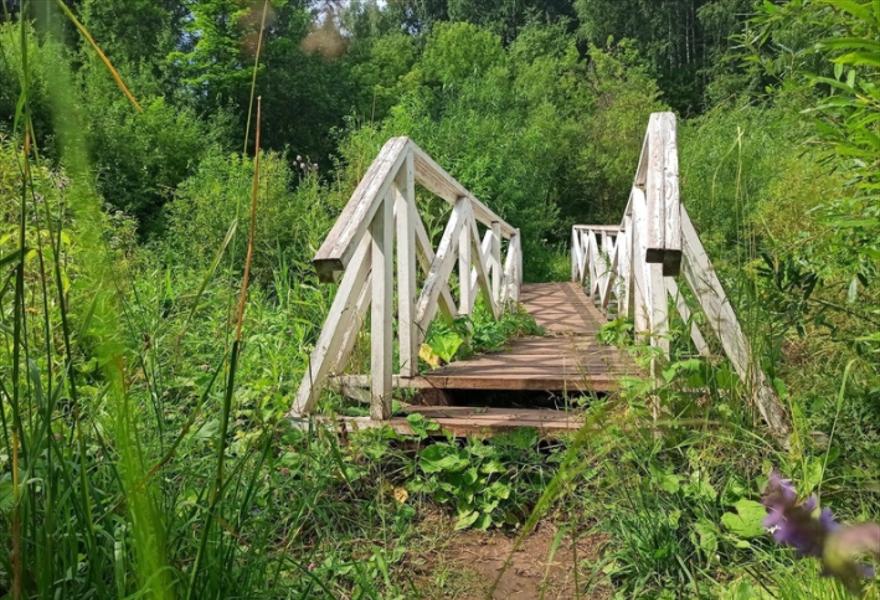 Экскурсия по долинам малых рек (р. Егошиха)