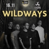 WILDWAYS в Смоленске