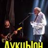 АукцЫон «Единственный летний концерт»