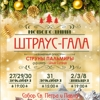 Концерт «Новогодний Штраус-гала»